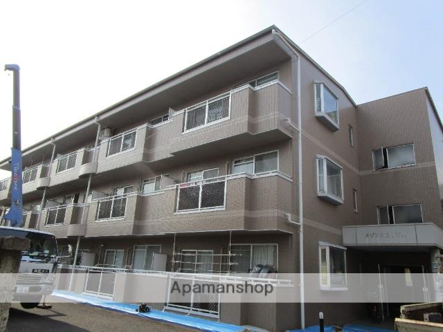 東京都葛飾区、綾瀬駅徒歩12分の築19年 3階建の賃貸マンション