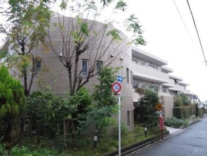 東京都目黒区、西小山駅徒歩13分の築13年 3階建の賃貸マンション