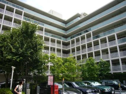 東京都品川区、目黒駅徒歩6分の築11年 8階建の賃貸マンション
