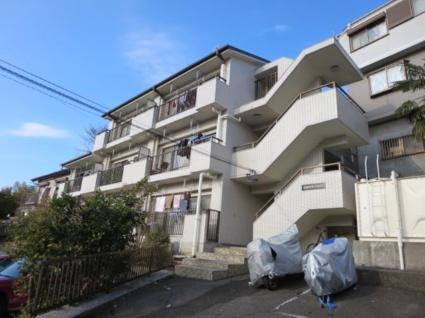 神奈川県横浜市港北区、菊名駅徒歩10分の築28年 3階建の賃貸マンション