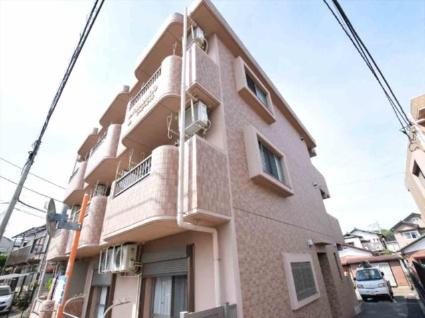 神奈川県相模原市中央区、淵野辺駅徒歩20分の築13年 3階建の賃貸マンション