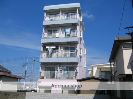 神奈川県相模原市中央区、相模原駅徒歩7分の築29年 5階建の賃貸マンション