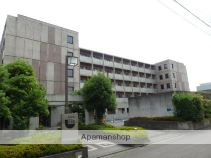 神奈川県川崎市中原区、武蔵小杉駅徒歩18分の築23年 5階建の賃貸マンション