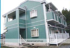 神奈川県平塚市、平塚駅徒歩97分の築19年 2階建の賃貸アパート