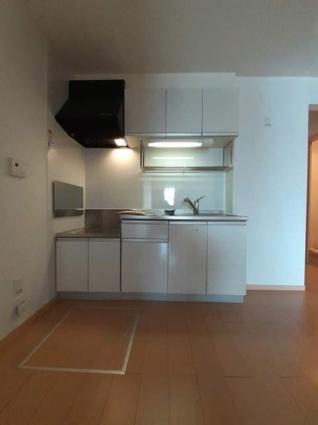 ニューロージーA[2DK/45.81m2]のキッチン