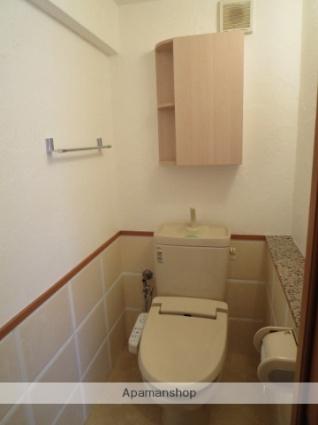 Lumiere泉[2LDK/54.22m2]のトイレ
