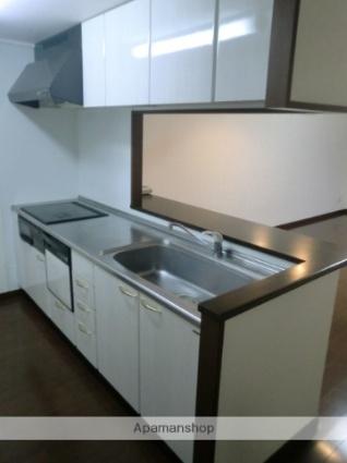 新潟県新潟市中央区神道寺1丁目[3LDK/73.81m2]のキッチン1