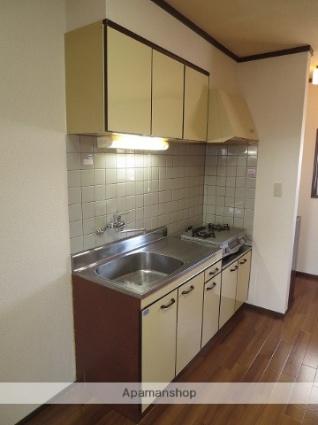 新潟県新潟市西区小針南台[3DK/50.76m2]のキッチン