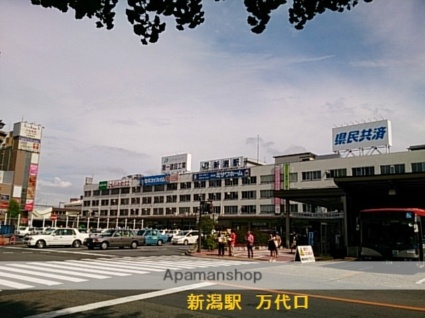 新潟ステーションハイツ[1K/20.7m2]の周辺3