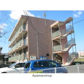 新潟県新潟市江南区、亀田駅徒歩5分の築19年 3階建の賃貸マンション