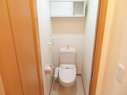 リープル[2LDK/60.24m2]のトイレ