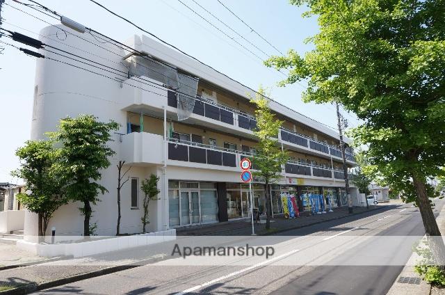 新潟県新潟市東区、越後石山駅徒歩21分の築27年 3階建の賃貸マンション