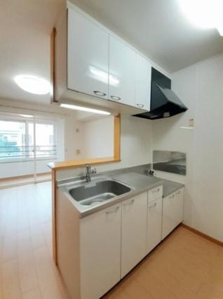 ハッピーフィールドA[1LDK/46.28m2]のキッチン