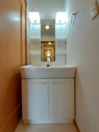 ビサイドミニョン[2DK/48.7m2]の洗面所