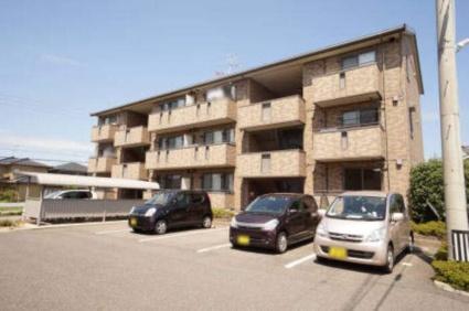 新潟県新潟市西区ときめき東1丁目[1LDK/44.4m2]の外観1