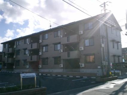 新潟県新潟市中央区大島[1LDK/46.83m2]の外観