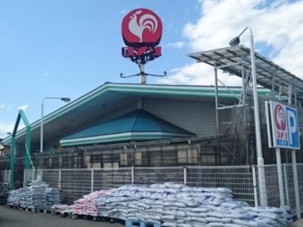 ボン マルシェ アン[2DK/42.77m2]の周辺6