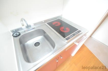 レオパレス椎ノ木台Ⅱ[1K/19.87m2]のキッチン