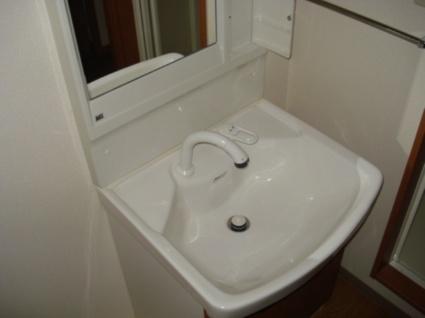 アイディールK[1LDK/40.92m2]の洗面所1
