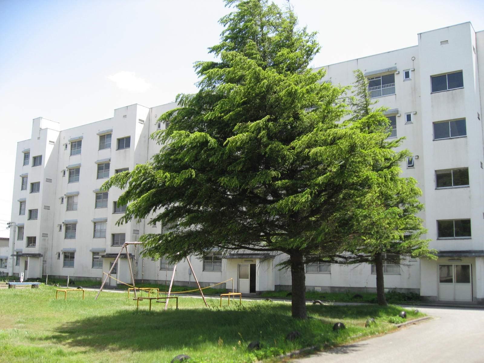 新着賃貸7:富山県小矢部市新西の新着賃貸物件