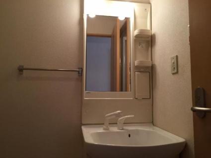 グランディール K&M[2LDK/54m2]の洗面所