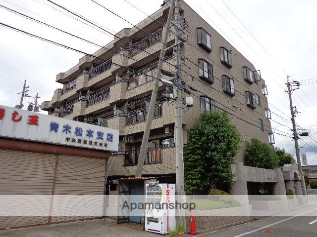 長野県松本市、南松本駅徒歩20分の築21年 5階建の賃貸マンション