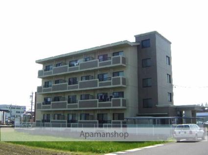 岐阜県岐阜市、西岐阜駅徒歩23分の築14年 4階建の賃貸マンション