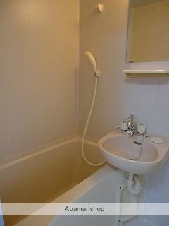 サニーヒル岳陽[1DK/30.29m2]の洗面所