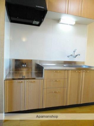 メゾンタケミネ[1K/30.35m2]のキッチン