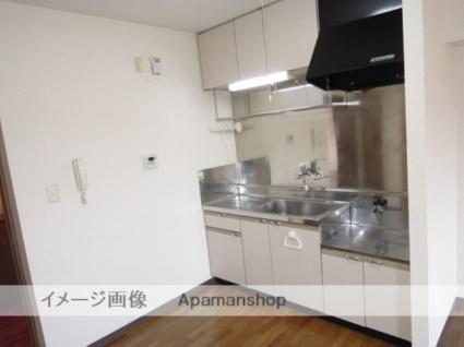 グレイス参番館[3LDK/66m2]のキッチン