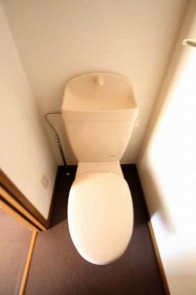 ビックストーンアネックス[2LDK/51.67m2]のトイレ