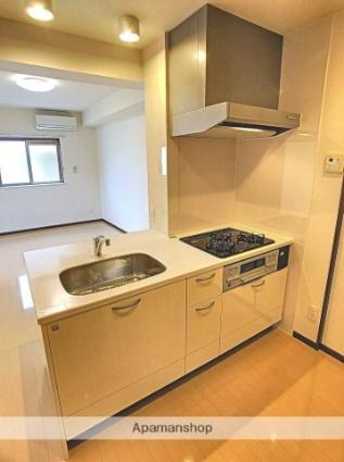 コンフォート石坂[1LDK/45.69m2]のキッチン