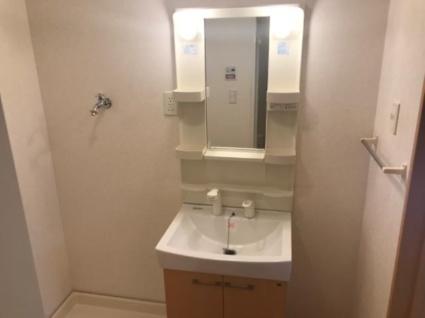 ミヨ・プチハウスⅡ[2LDK/62.5m2]の洗面所