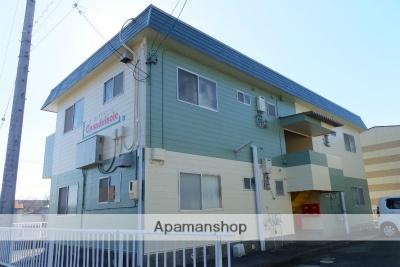 静岡県浜松市北区、金指駅徒歩4分の築29年 2階建の賃貸アパート