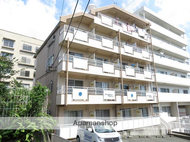 静岡県浜松市中区、浜松駅徒歩17分の築29年 5階建の賃貸マンション
