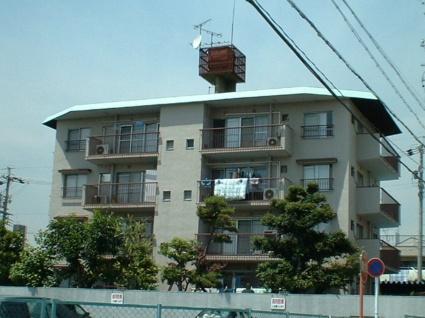 愛知県名古屋市千種区、今池駅徒歩11分の築48年 4階建の賃貸マンション