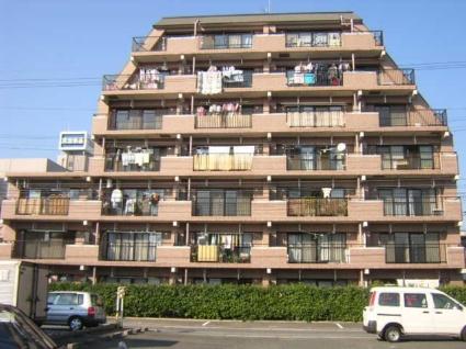 愛知県名古屋市北区、森下駅徒歩8分の築19年 7階建の賃貸マンション