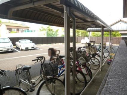 グランハート[3LDK/73.98m2]の駐車場