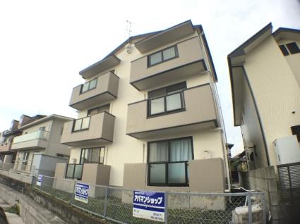 愛知県弥富市、佐古木駅徒歩3分の築15年 3階建の賃貸アパート