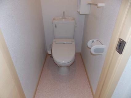 アンジュ ルミエール[2LDK/57.21m2]のトイレ
