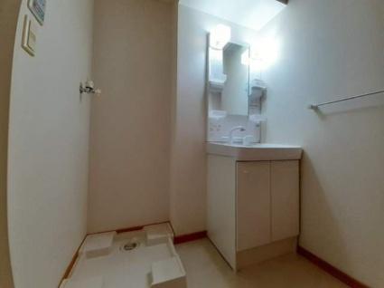 グランドゥール[1K/29.47m2]の洗面所