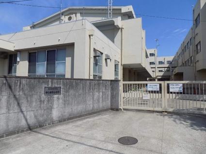 M・Kマンション[2LDK/55.65m2]の周辺3