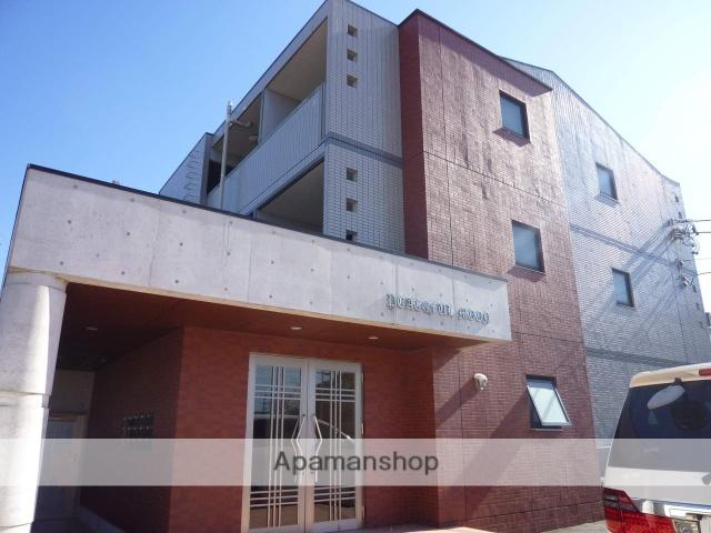 愛知県名古屋市守山区、新守山駅徒歩13分の築14年 3階建の賃貸マンション