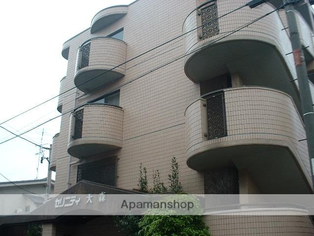 愛知県名古屋市守山区、大森・金城学院前駅徒歩3分の築24年 4階建の賃貸マンション