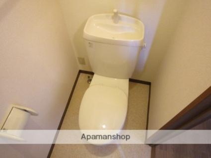 アネシスT・C[1K/33.61m2]のトイレ