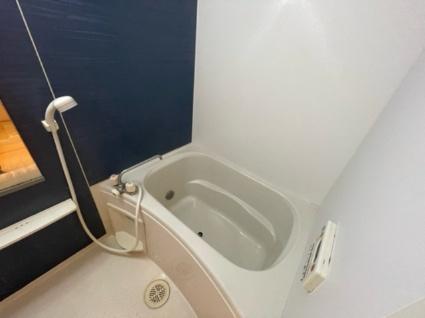 さらい Ⅱ[1LDK/42.8m2]のその他部屋・スペース