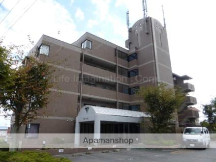 滋賀県大津市、比叡山坂本駅徒歩8分の築20年 5階建の賃貸マンション