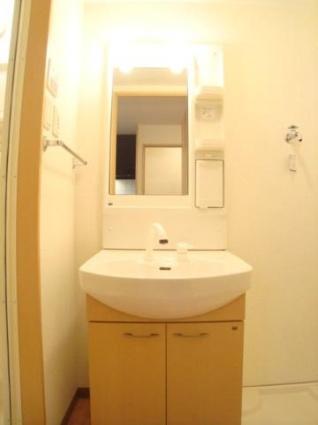 パークヒルズ・B[1K/30.96m2]の洗面所