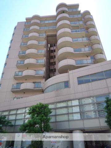 大阪府大阪市浪速区、難波駅徒歩7分の築24年 11階建の賃貸マンション