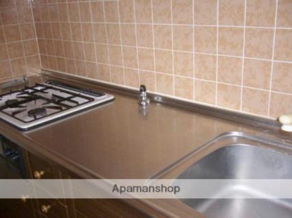 ライオンズマンション和歌山船戸[3LDK/65.53m2]のキッチン